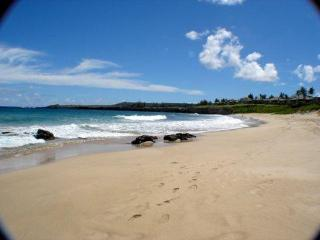 Ultimate Luxury Bay Villa 2BR/ 3BA, next to beach! - Kapalua vacation rentals