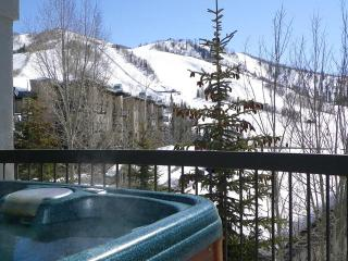Private Hot w/ Views of Ski Slopes, Pool, Shuttle - Steamboat Springs vacation rentals