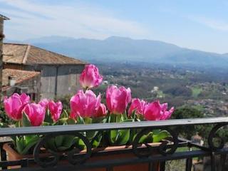 Altavista - Castel San Pietro Romano vacation rentals