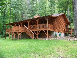 Cataloochee Mountain Cabin/ Great Smokey Mountains - Waynesville vacation rentals