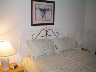 Premier Ski-in/Ski-out Location, Sunrise Mountain - Killington vacation rentals
