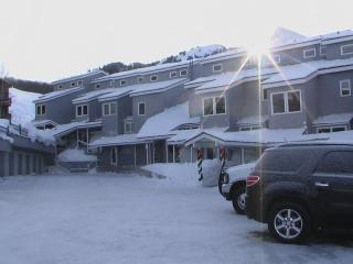 3 Bed Crested Mtn. Condo Ski-in/out! - Crested Butte vacation rentals