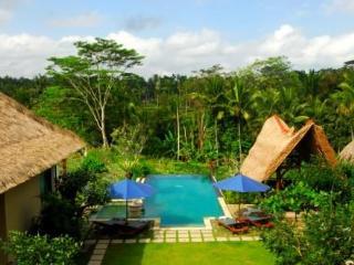 Villa Sebali serene,luxurious 4 bedrooms villa - Tegalalang vacation rentals