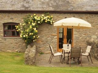 Plas Yw Cottage in Conwy Valley - Tyn-y-Groes vacation rentals