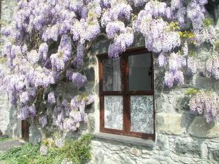 Tressi Porffor Cottage In Conwy Valley - Rowen vacation rentals