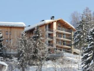 Les 3 Glaciers 24P - Montchavin-Les Coches PARADISKI - Montchavin vacation rentals