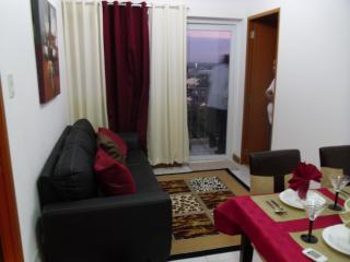 Cosy, Peaceful, Furnished 2 BR  Condo Near Airport - Paranaque vacation rentals