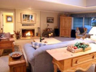 Harbor Retreat Waterfront Home - Whidbey Island vacation rentals
