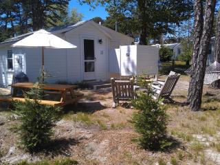 Welfleet Cottage, Brownies Cabins, Cape Cod - Wellfleet vacation rentals