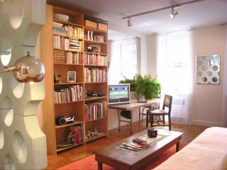 Central Park 1 BR Apartment - New York City vacation rentals