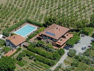Casa Rondini , organic farm - Montegabbione vacation rentals