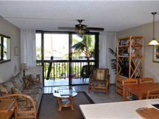Maui Vista #1323 - Image 1 - Kihei - rentals
