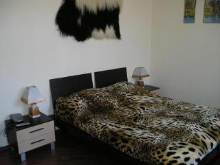 Kontraktova square apartment in the heart of Kiev - Kiev vacation rentals