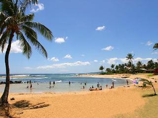 Commanding View of POIPU BEACH Coastline to SUNSET - Poipu vacation rentals