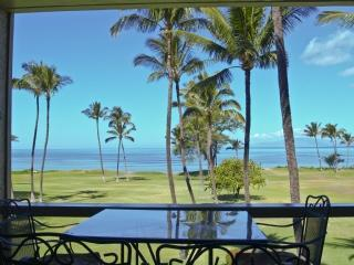 Leina'ala 305 Two Bedroom Ocean View - Kihei vacation rentals