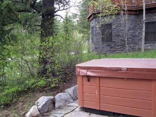 2 bed /2.5 ba- GRANITE RIDGE CABIN 7586 - Teton Village vacation rentals