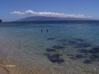 Corner 2brm 2ba Beachfront  Condo - Lahaina vacation rentals
