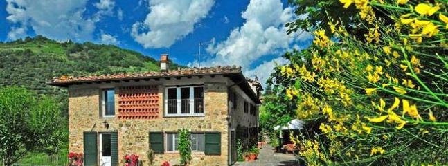 Eco-Friendly Farmhouse in Lucca: Cooking Lessons and More! - Image 1 - Lucca - rentals
