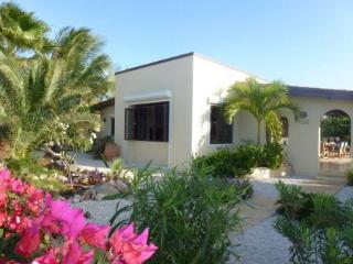 Caribbean Wave - Aruba vacation rentals
