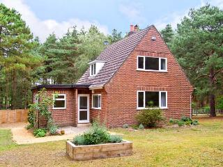 THE CHALET, pet friendly, country holiday cottage, with a garden in Avon Heath Country Park, Ref 6108 - Saint Ives vacation rentals
