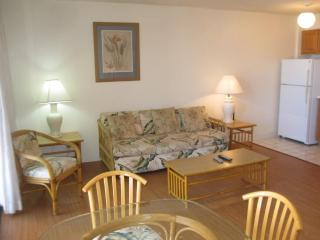 HelloRelaxation HAWAII, walk to the beach - Oahu vacation rentals