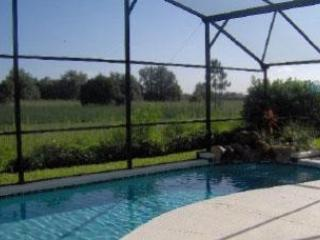 Pool area - 2015 SPECIAL -  ALL RATES DISCOUNTED  BY 15% - Kissimmee - rentals