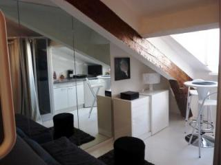 Forville Attic, Affordable Studio in Cannes - La Roquette-sur-Siagne vacation rentals