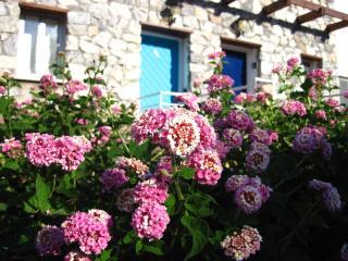 Turkuaz Kapi Apt, Bahceli, Kyrenia, North Cyprus - Bahceli vacation rentals