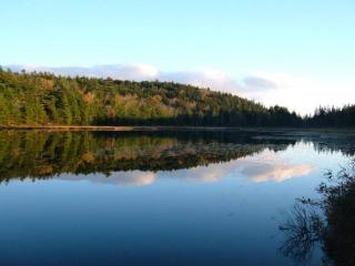 Hodgdon Pond 2 - Seal Cove vacation rentals