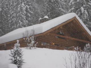 Skier's Paradise - Revelstoke vacation rentals