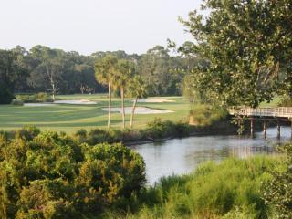 Breathtaking Views from Palmetto Dunes Villa! - Hilton Head vacation rentals