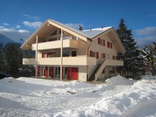 Wonderful Swiss Mountain Chalet Apartment - Wengen vacation rentals
