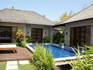2-1 Bedrooms Villa with great location in Seminyak - Seminyak vacation rentals