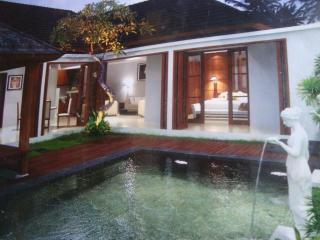 Sanur Villa Leli Satu - Sanur vacation rentals