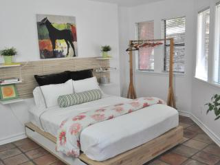 The Parkside Cabin: 2 Bedroom Apartment IN Zilker - Austin vacation rentals