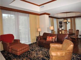 Ritz Carlton Residence #110 - Minturn vacation rentals