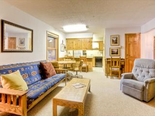 Gorgeous 2 BR/2 BA House in Angel Fire (SF 208-B) - Taos Area vacation rentals