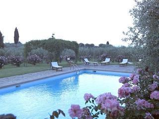 Luxury villa in Tuscany ,Italy villa Castellare - Province of Florence vacation rentals