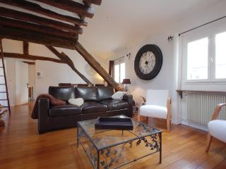 Apartment in St Germain des Pres, Paris - Aramis - Paris vacation rentals