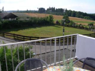 Vacation Apartment in Pfalzfeld - 861 sqft, three balconies, recently renovated (# 1614) - Zell (Mosel) vacation rentals