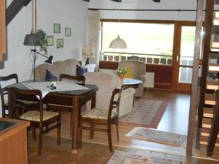 Vacation Apartment in Bodenfelde - nice lawn, right on the river, free WIFI (# 1382) - Wahlsburg vacation rentals