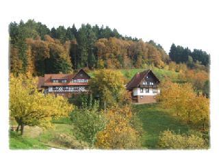 Vacation Apartment in Seebach (Baden) - 538 sqft, relaxing, comfortable, spacious (# 1778) - Freudenstadt vacation rentals