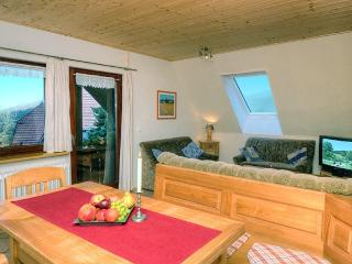 LLAG Luxury Vacation Apartment in Oberharmersbach - 807 sqft, farm setting, games and books available… - Oberharmersbach vacation rentals