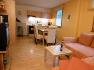 LLAG Luxury Vacation Apartment in Koblenz - 840 sqft, direct views to the Rhine River, great location… - Linz am Rhein vacation rentals