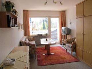 Vacation Apartment in Oberstdorf - 280 sqft, central, quiet, elevator (# 1874) - Oberstdorf vacation rentals