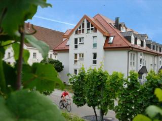 LLAG Luxury Vacation Apartment in Staufen im Breisgau - 861 sqft, amazing views, right on the Schlossberg,… - Sulzburg vacation rentals