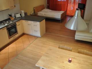 Vacation Apartment in Berlin - 474 sqft, city living, great surroundings, laminate flooring (# 1364) - Falkensee vacation rentals