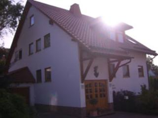 Vacation Apartment in Landstuhl - 753 sqft, terrace, child-friendly, quiet location (# 1237) - Landstuhl vacation rentals
