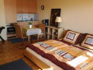 Vacation Apartment in Regensburg - 387 sqft, nicely furnished, quiet location (# 948) - Bavaria vacation rentals