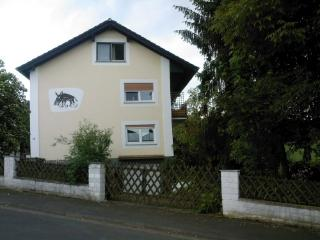 Vacation Apartment in Florstadt - 646 sqft, modern (# 1429) - Butzbach vacation rentals